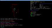 console_0.8_screen_playerrace