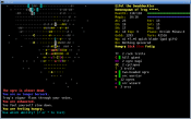 console_0.8_screen_orc4