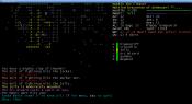 console_0.8_screen_ash